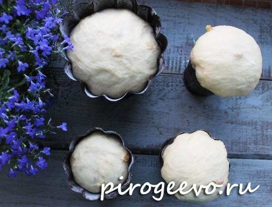 Тесто в формах для куличей