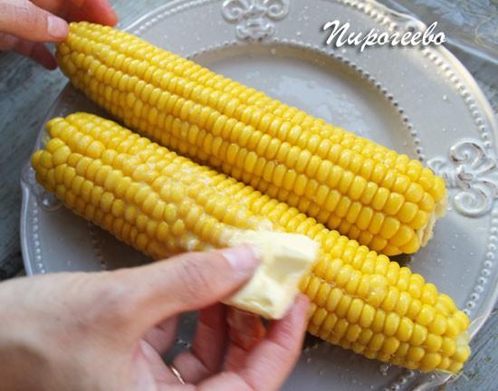Как закрыть кукуруза в домашних условиях 306