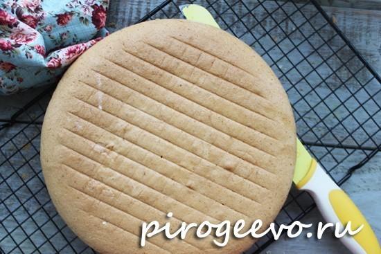 Разрезаем бисквит на два коржа