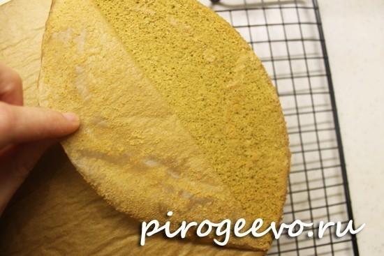Остужаем нежно-зеленый бисквит на решетке