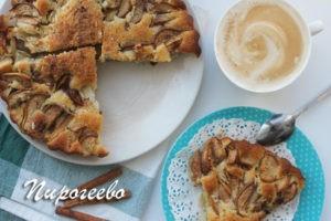 Яблочный пирог рецепт с фото пошагово в духовке