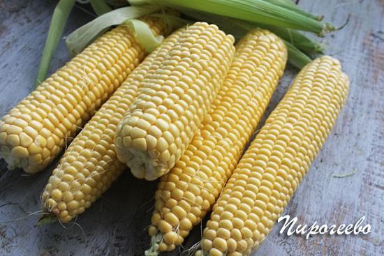 Как запечь кукурузу в духовке