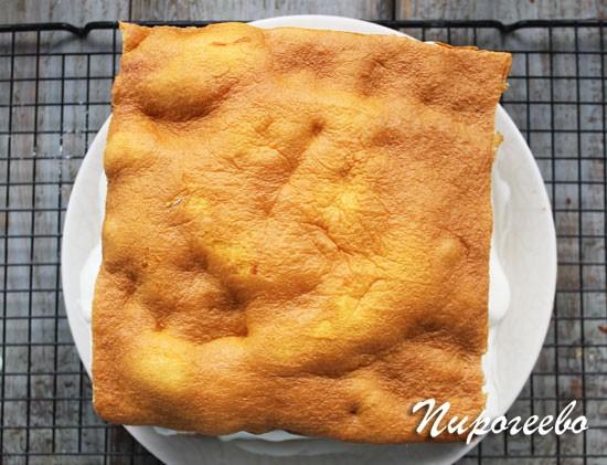 Формируем квадратный или круглый торт
